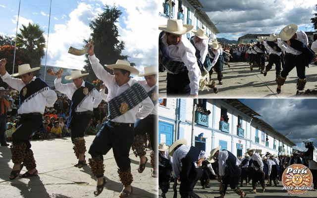 mensaje de la danza la guayabina