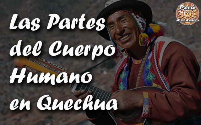las partes del cuerpo humano en quechua